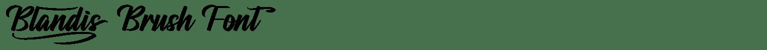 Blandis Brush Font