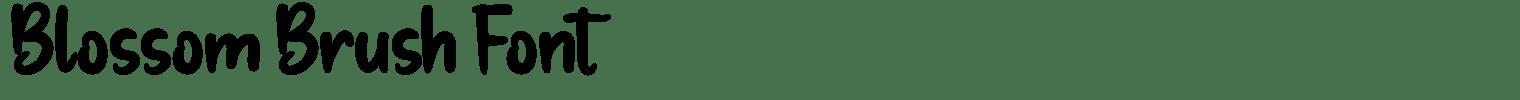 Blossom Brush Font