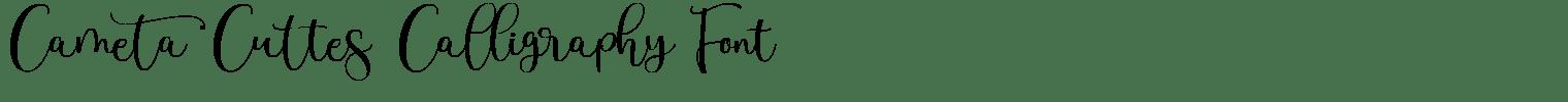 Cameta Cuttes Calligraphy Font