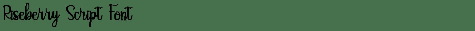 Riseberry Script Font