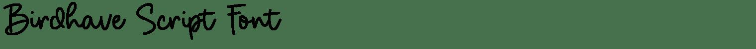 Birdhave Script Font