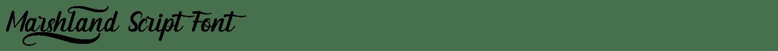 Marshland Script Font