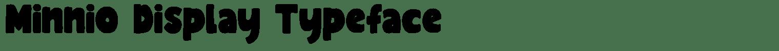 Minnio Display Typeface