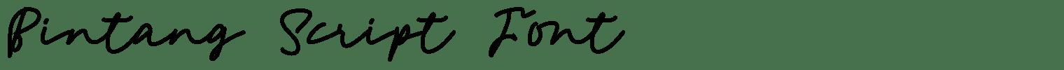 Bintang Script Font