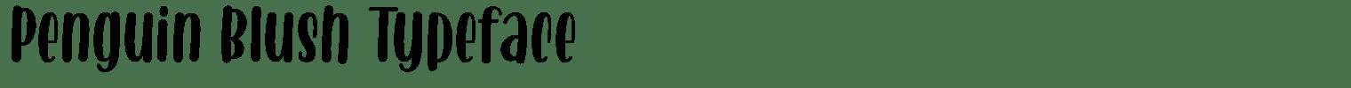 Penguin Blush Typeface