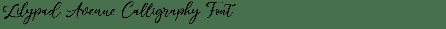 Lilypad Avenue Calligraphy Font