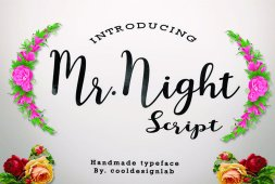 mr-night