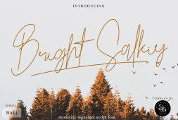 bright-salkiy