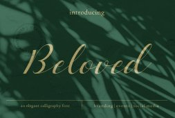 beloved-romantic-script