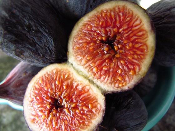 #Figs