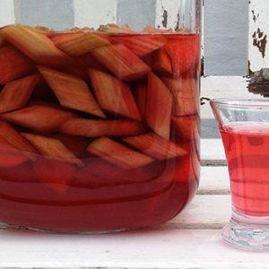 Rhubarb schnapps