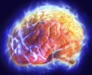 Еда, которая питает мозг