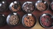 黒いんげん豆の注目の栄養成分と効能!簡単レシピで美容と健康を保てる方法とは?
