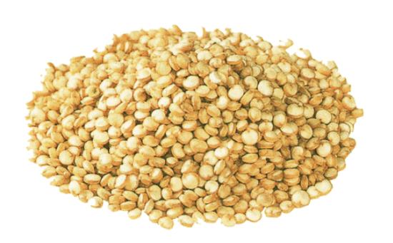 キヌアとは?その効果や効能と食べ方や炊き方、アマランサスや玄米との違いについて