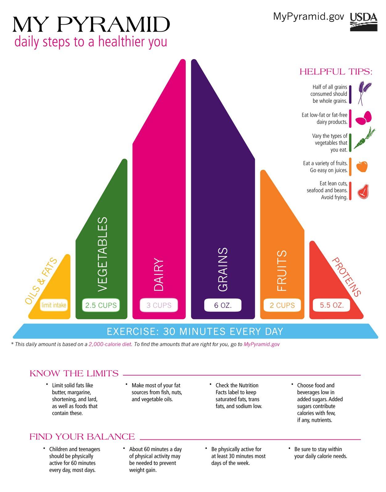 My Food Pyramid Food Pyramid