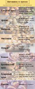 Инфографика Витамины в орехах