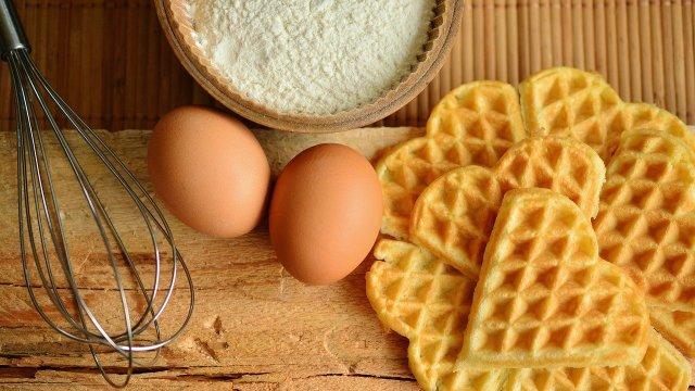 代替卵の最適化と機能特性