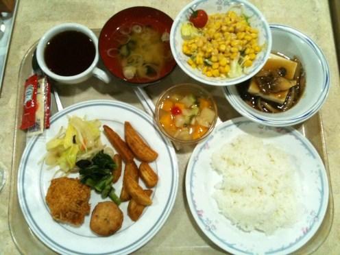 1st Day Dinner Fuji Tour Waseda Hoshien