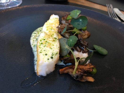 Turbot, hen of the woods and pike perch roe