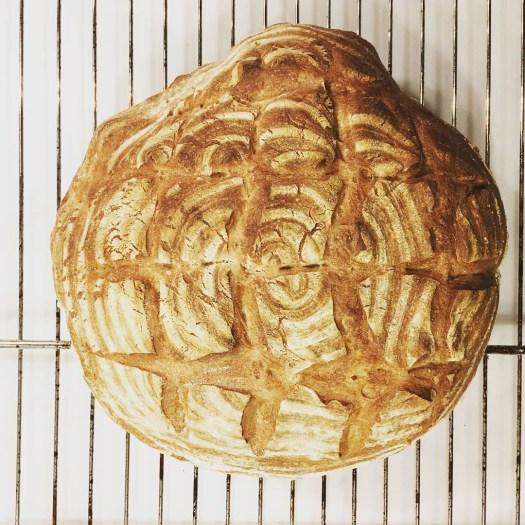 Sourdough bread proved in banneton