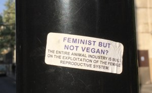 Feminist but not vegan?