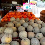 farmers outlet / grantville – san diego, ca
