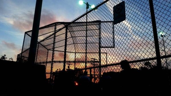 softball-fence