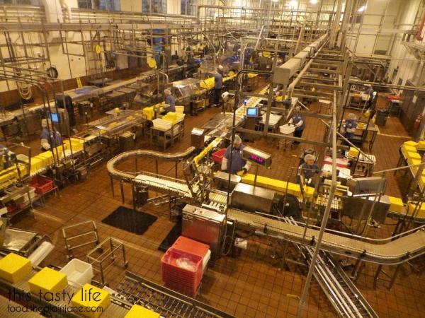 cheese-at-tillamook-factory