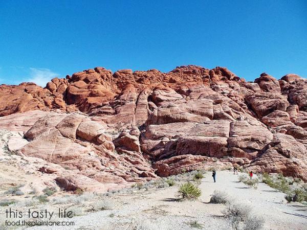 Red Rock Canyon | Las Vegas, NV