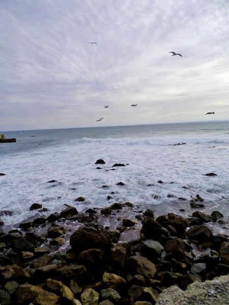 mexico-beach-ocean