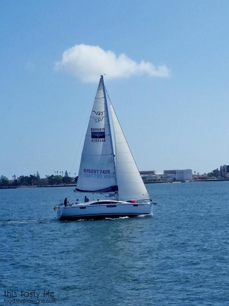 sailboat-san-diego-bay