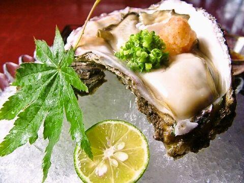 岩牡蠣の美味しい食べ方。牡蠣の種類は世界では100種類以上!ちなみにブランデーを垂らすという食べ方もあります。