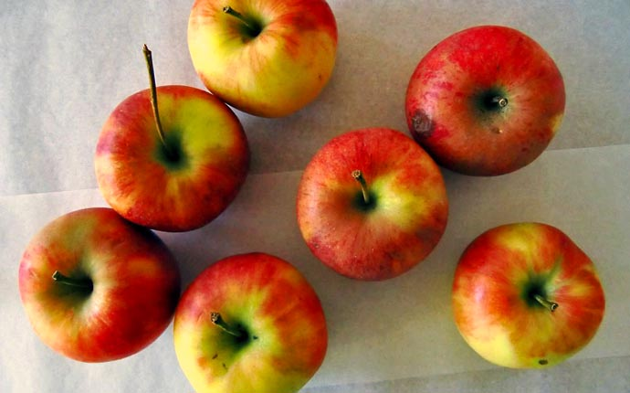 apfel-gesund-superfood