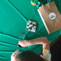 Upcycled Baby Food Jar Potted Gardens DIY Kid Craft