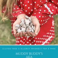 Muddy Buddy's AKA Puppy Chow