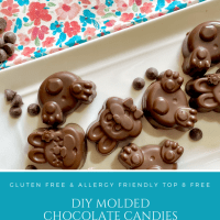 Allergy Friendly Easter Chocolate Molds | Gluten Free | Vegan | Top 8 Free
