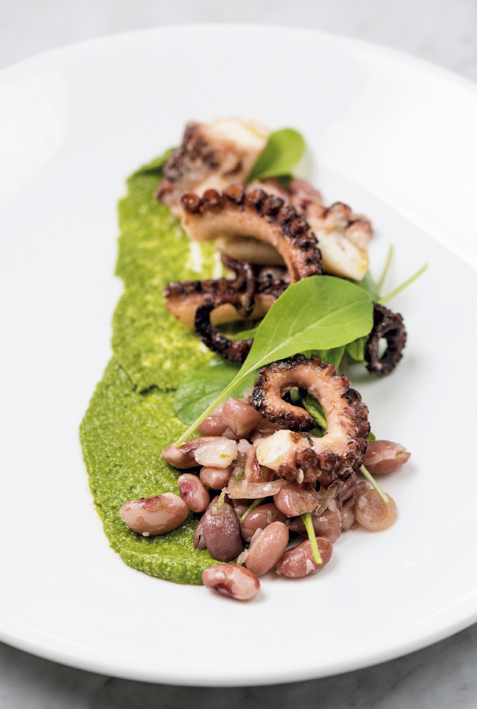 Grilled octopus with a bean salad