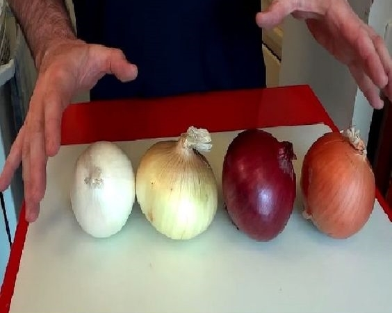 ONIONS-What's the difference?