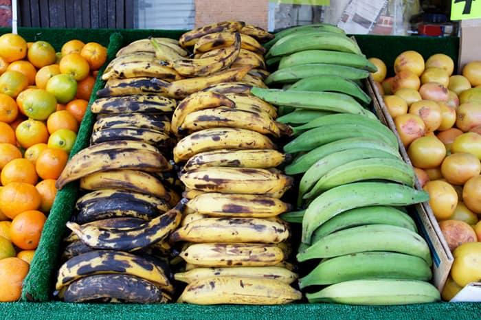 Brazil bananas three scene 1