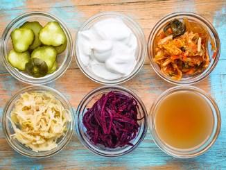 a set of fermented food: cucumber pickles, coconut milk yogurt, kimchi, sauerkraut, red beets, apple cider vinegar