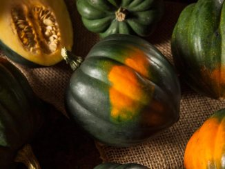 Curried Acorn Squash Soup | Food & Nutrition | Student Scoop
