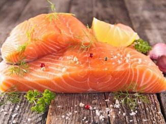 raw salmon fillet