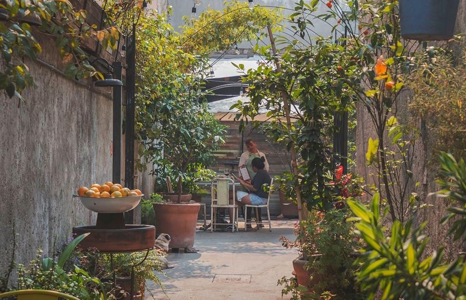 10 patios hipsters con cocina digna de recordar y ambiente bohemio en la CDMX