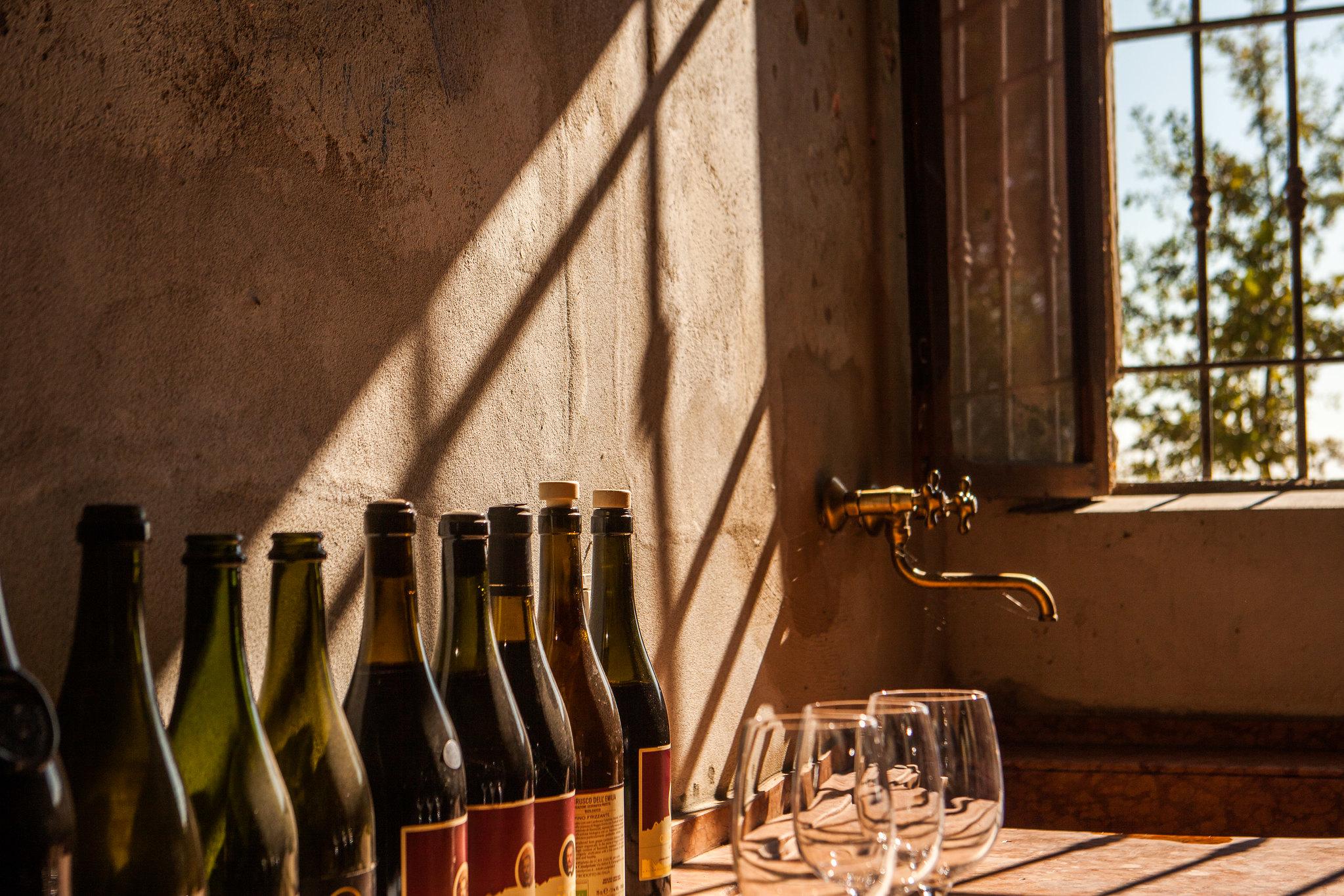 6 datos de los vinos orgánicos que tienes que conocer
