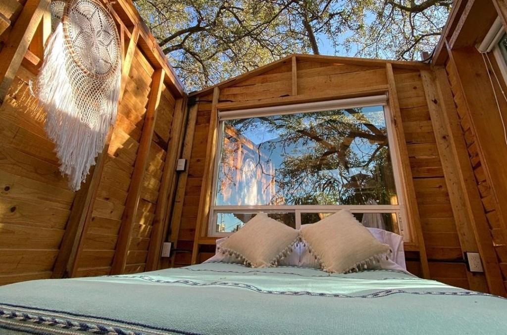 Descubre por qué todos se quieren hospedar en esta casa del árbol sin techo de Oaxaca