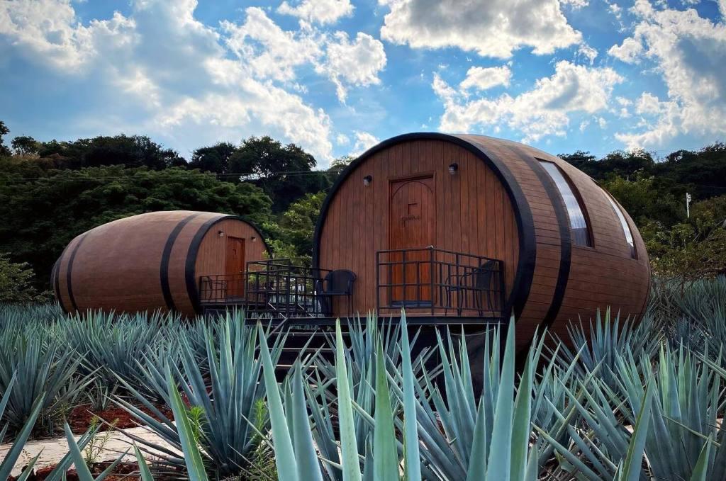 6 de los hoteles con las habitaciones más originales de México