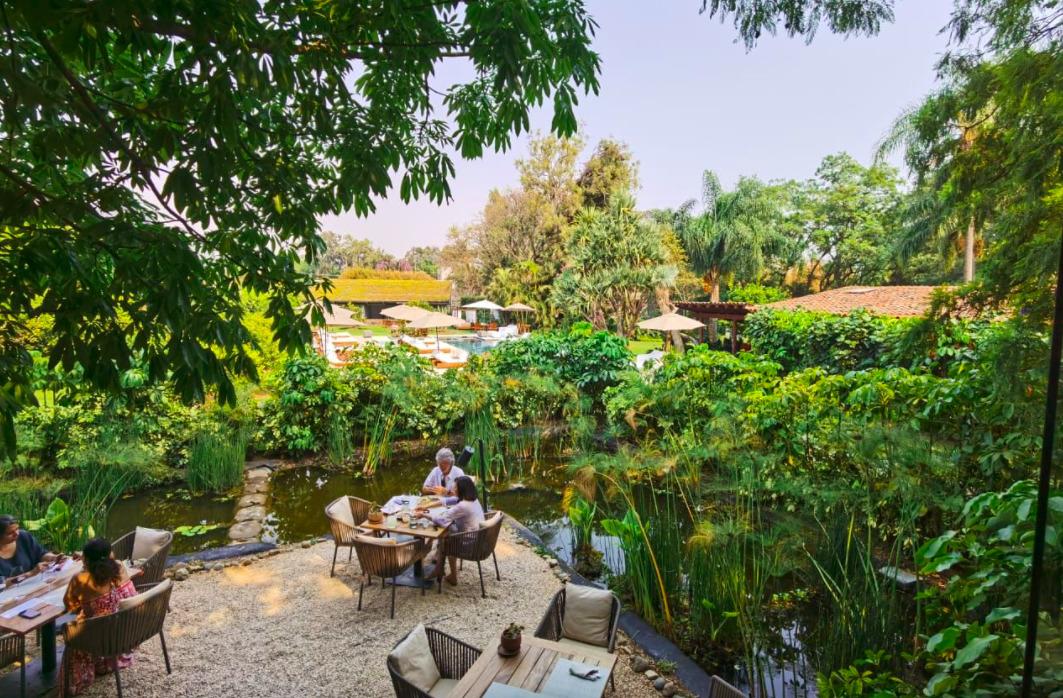 Mesa de Origen: el restaurante secreto más bonito de Tepoztlán