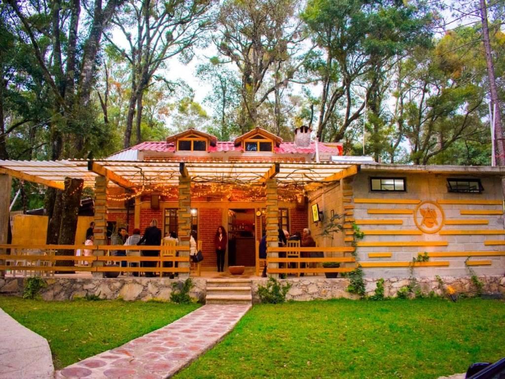 Acacia: el encantador fine dining en medio del bosque (ideal para relajarte y disfrutar de la naturaleza)