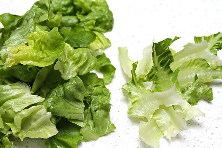 Torn Boston lettuce