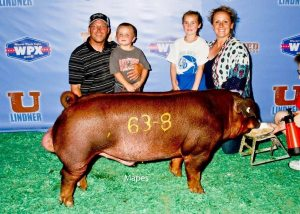 The Clark Families Show Pigs